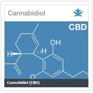 cannabidiol-cbd-cannabis-marijuana