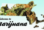 massachusetts_welcome-marijuana