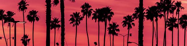 California Recreational Weed