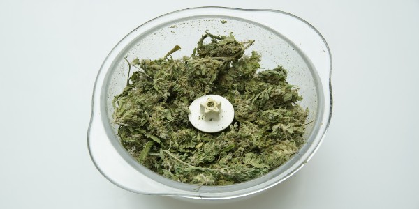 Making hash from marijuana buds using a blender