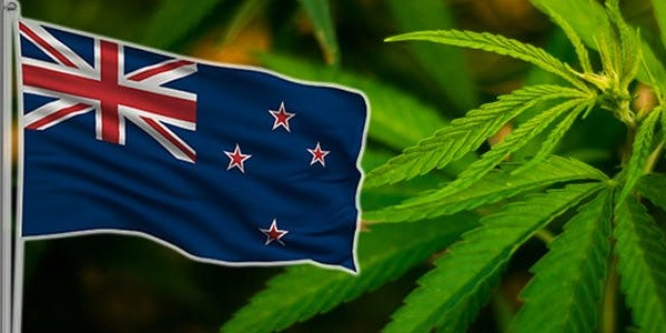 Stealth Delivery of Marijuana to New Zealand