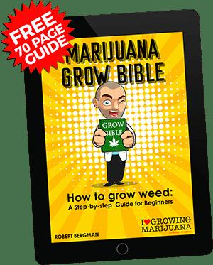 Free Grow Guide