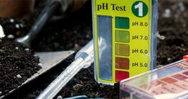 How to measure the PPM and pH of soil